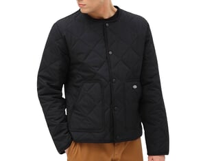 "Dickies ""Killian Padded Liner"" Jacket - Black"