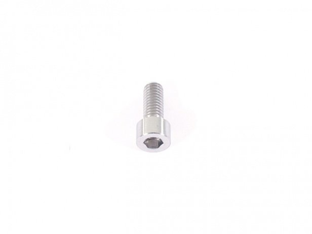 "TLC Bikes ""Internal Titanium"" Seat Clamp Bolt"