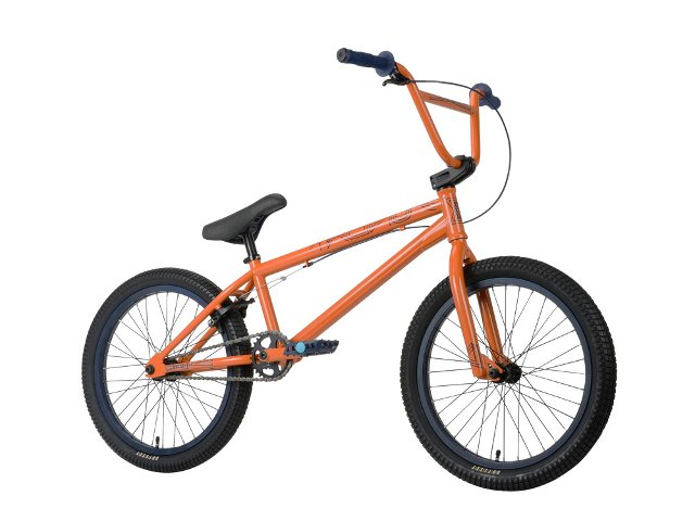 "Sunday Bikes ""Gary Young EX"" 2013 BMX Rad"